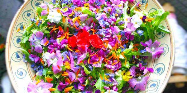 fiori_in_cucina